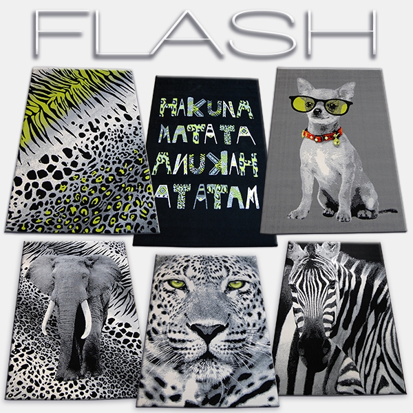 Rugs collection Flash