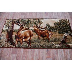 Carpet MAKATA - JELENIE olive