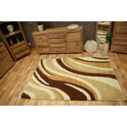 Carpet SHAGGY LONG 4221 ivory