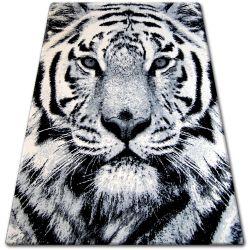 Carpet BCF FLASH 33297/170