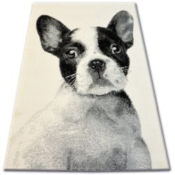 Carpet BCF FLASH 33327/160 - French Bulldog
